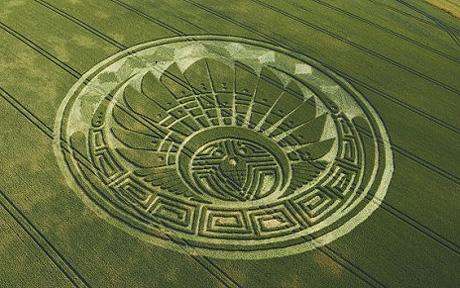Presunta figura Maya en un nuevo cropcircle Circul10