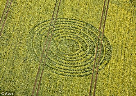 Los primeros crop circles de la primavera europea 2009 Figura10