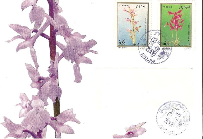 mes jolie lettres vers l'étranger Numari17