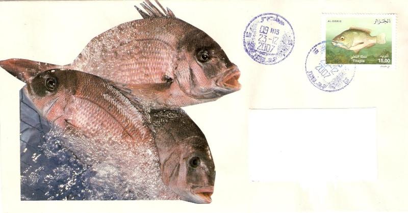 mes jolie lettres vers l'étranger Numari19