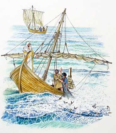 La Pesca 16473310