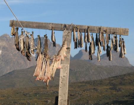 La Pesca Secade11