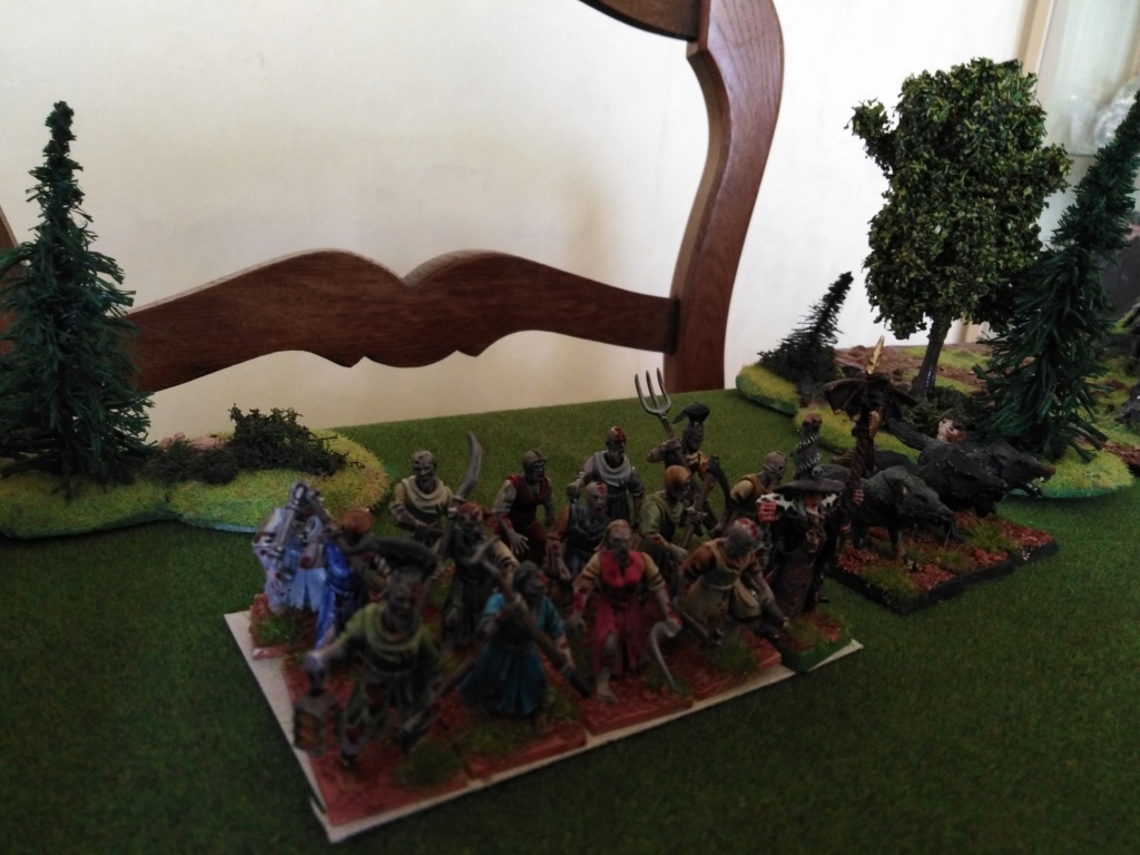warhammer patrouille Img_2327