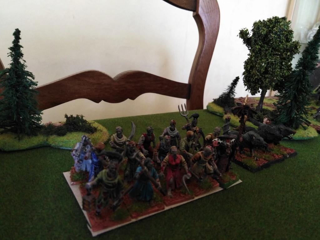 warhammer patrouille Img_2328