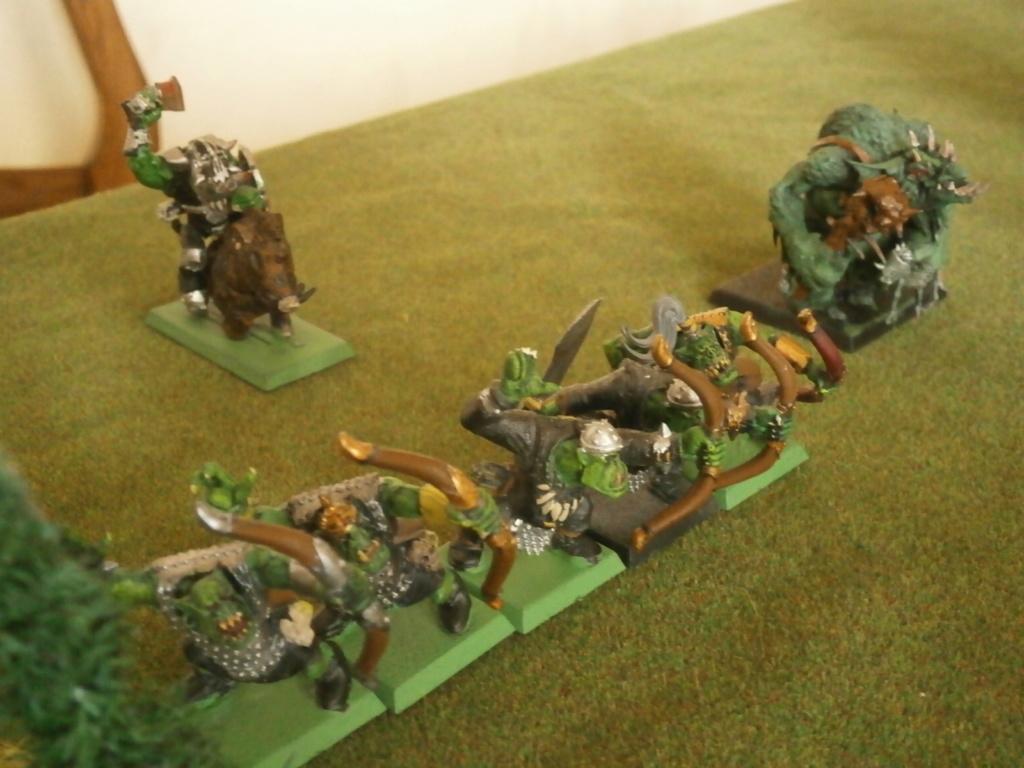 warhammer patrouille P4070115