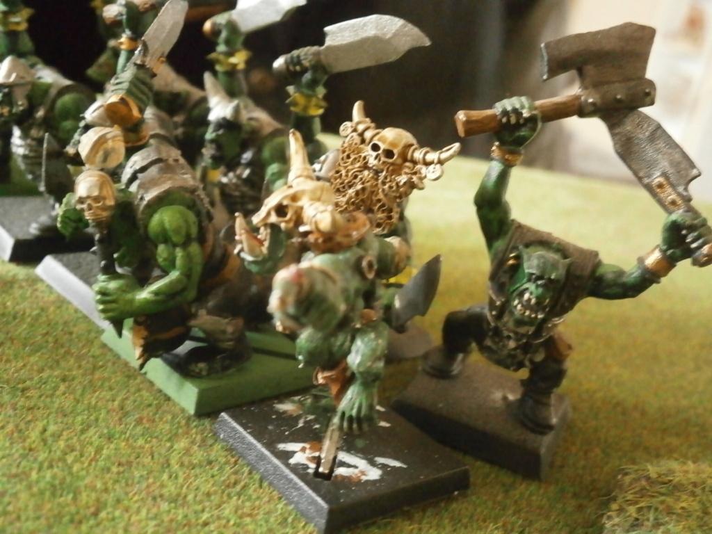 warhammer patrouille P4070122