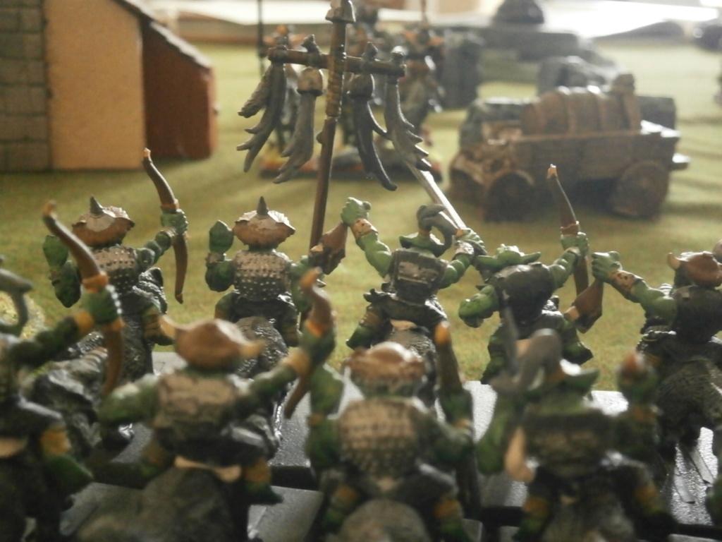 warhammer patrouille P4070123