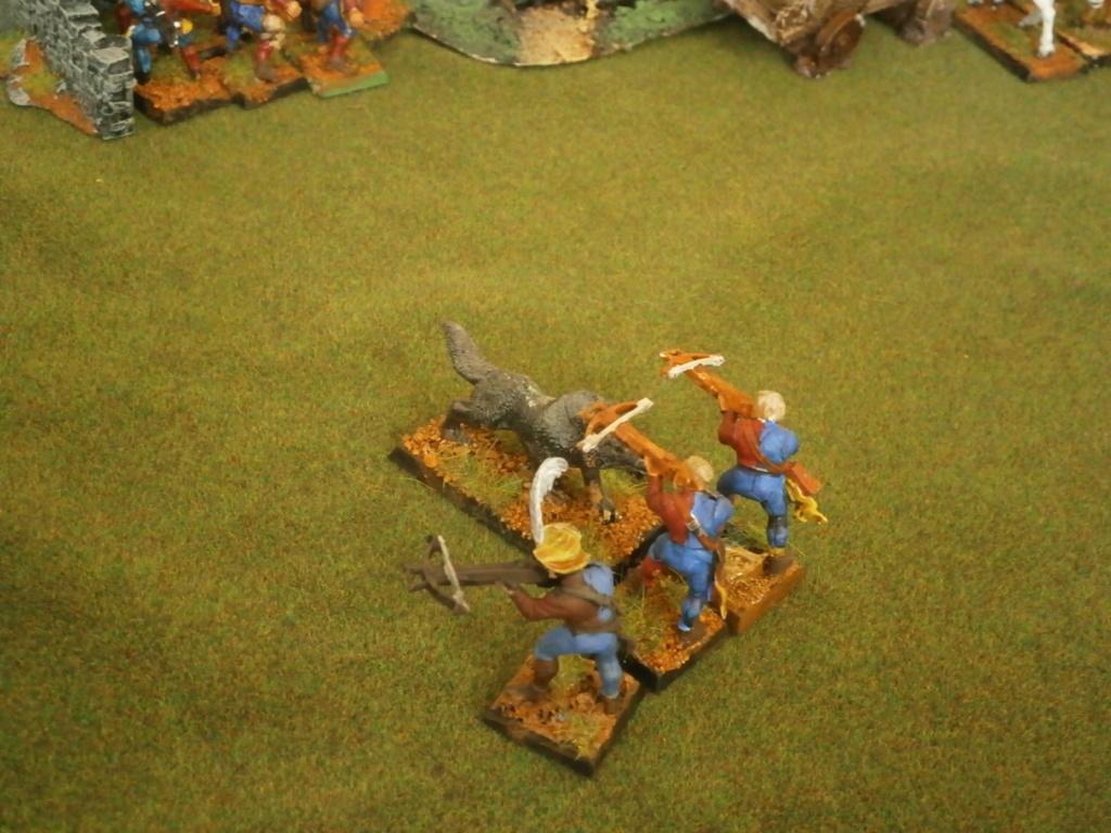 warhammer patrouille P4110123