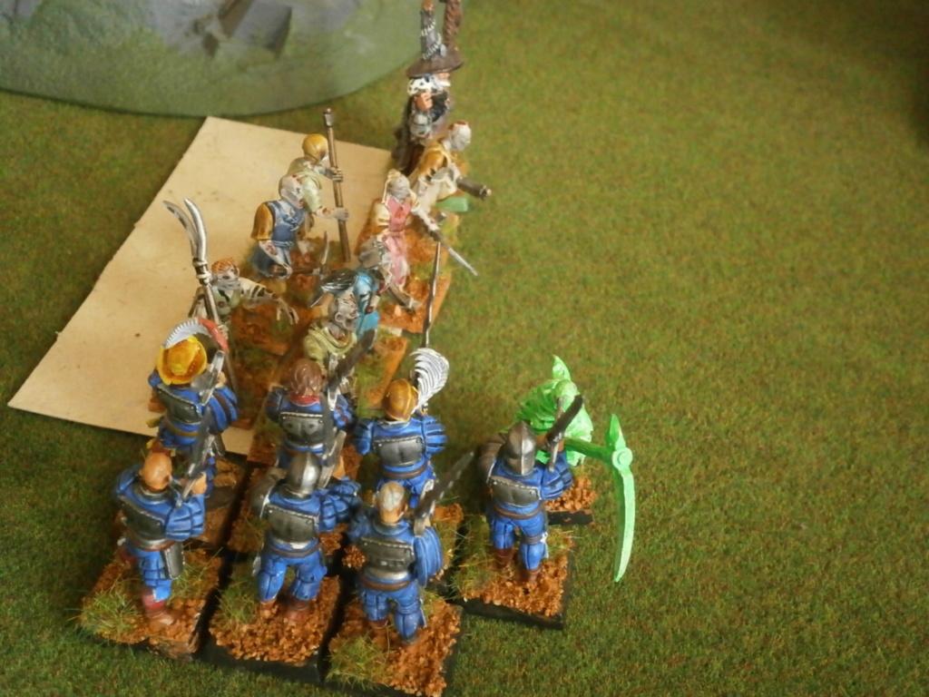 warhammer patrouille P4110132
