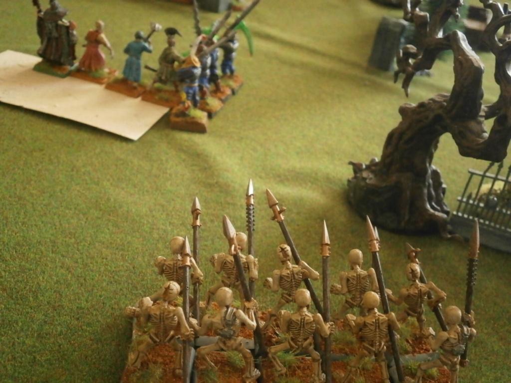 warhammer patrouille P4110133