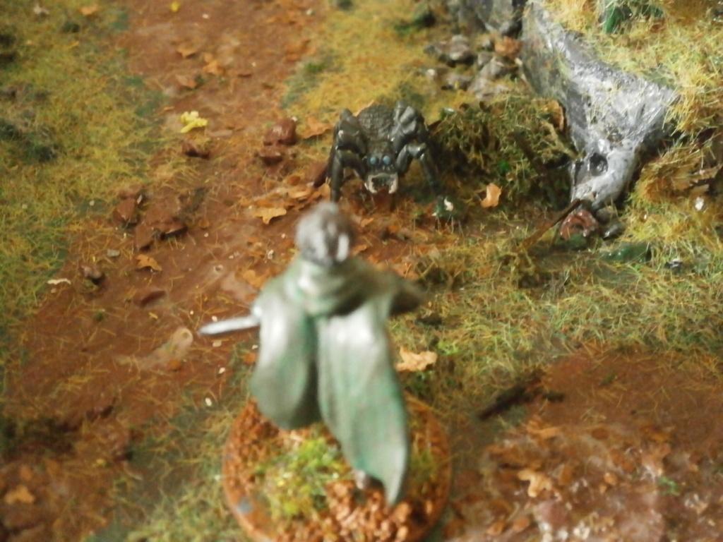 Ranger of the shadow deep P4220211
