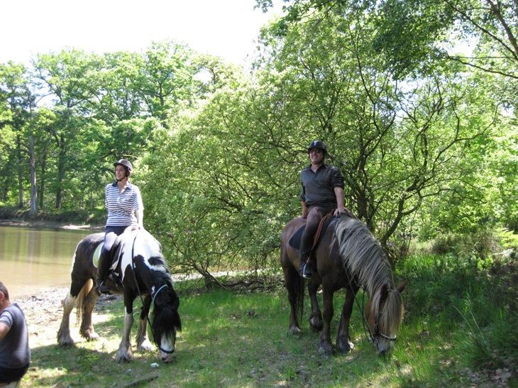 Qui veut découvrir la forêt de Rambouillet ?! bis... - Page 5 Img_0016