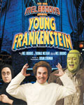 Young Frankenstein Youngf10