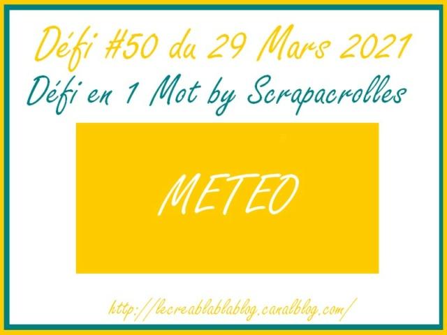 Défi #50 du 29 mars Dzofi197