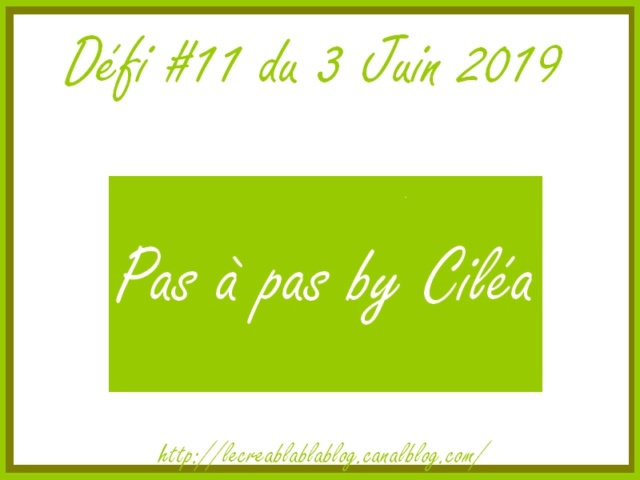 Défi #11 du 03 juin 2019 : Pas à pas + galerie by Ciléa Dzofi_32