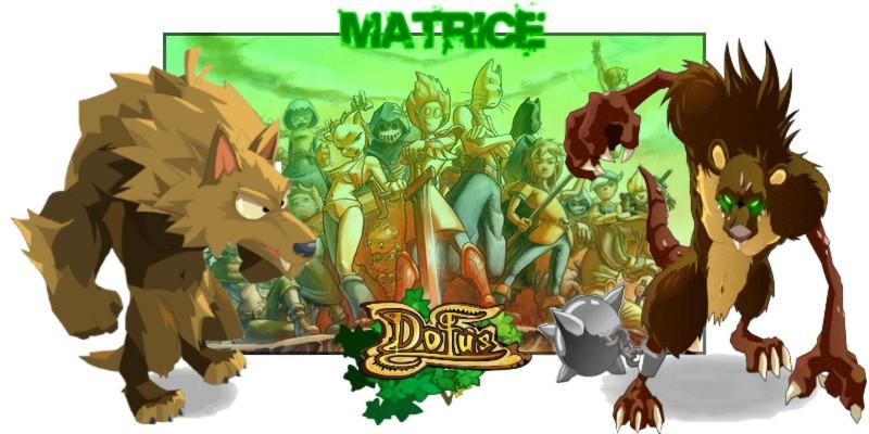 Forum de Matrice