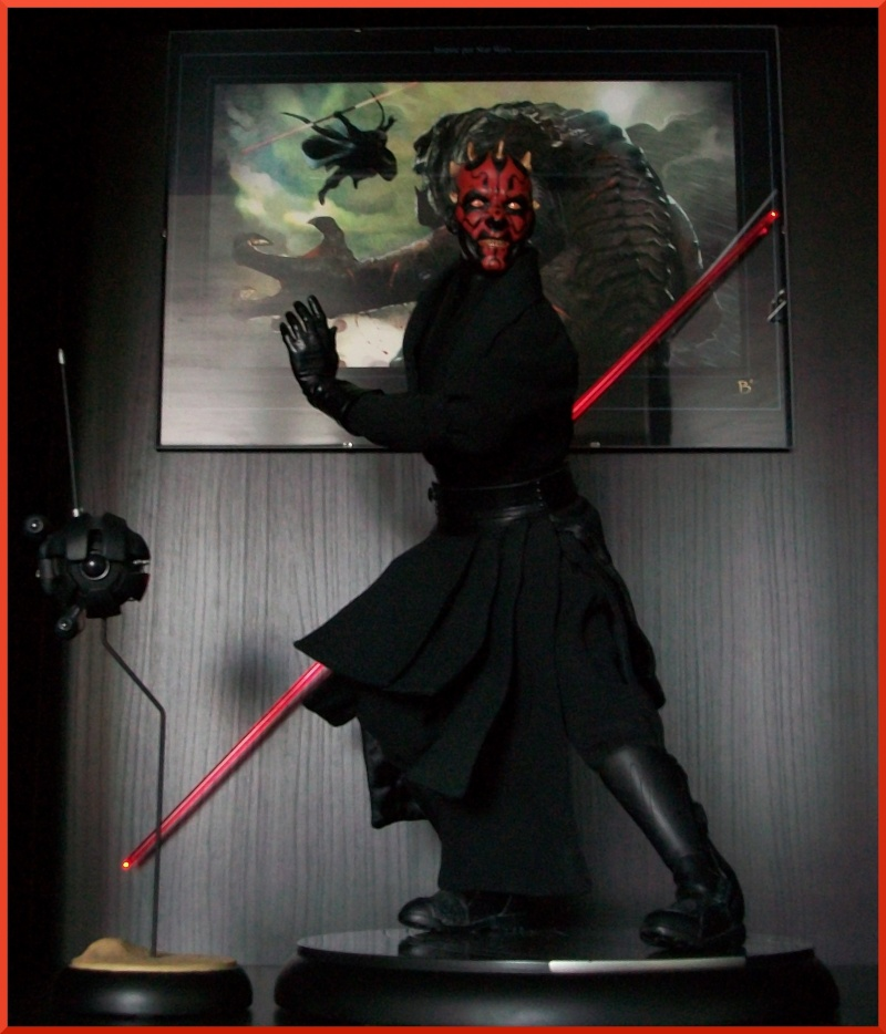 Collection n°198 : Darth Maul 100_0810