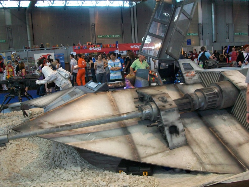 Japan-Expo 2009 - 2/5 Juillet 09 (Villepinte) - Page 3 100_1828