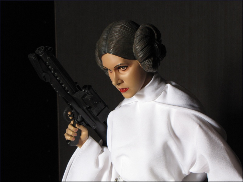 Collection n°34 : Darth Maul Leia313