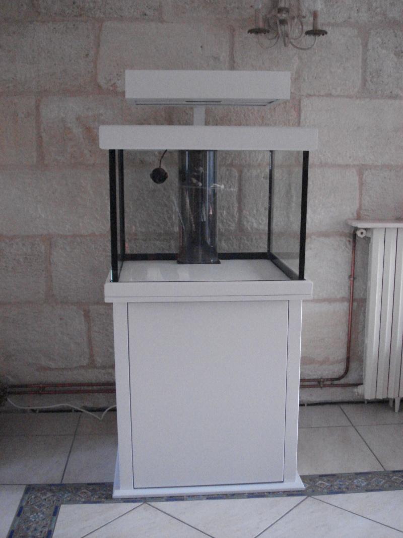 Evolution du projet Récifal ( 250 L ) Dsc03910