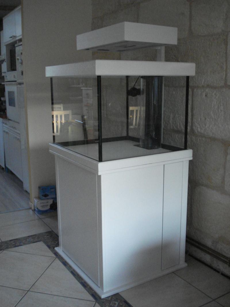 Evolution du projet Récifal ( 250 L ) Dsc03911