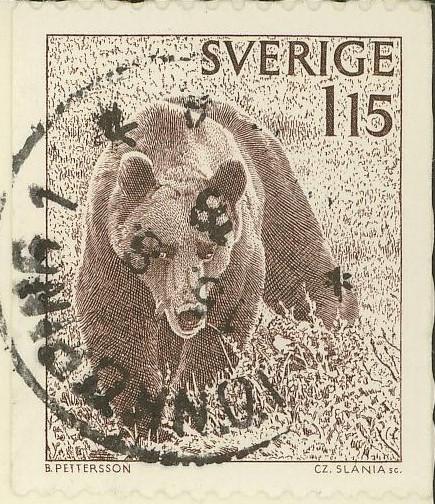 Bären 0115