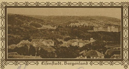 Bildpostkarten Österreich  -  Mi. P 278 24_40010