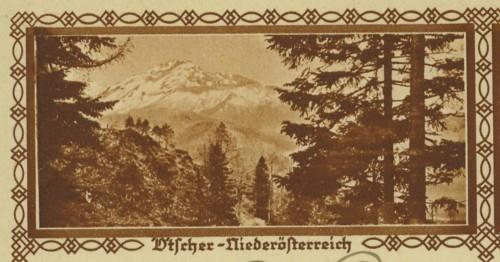 Bildpostkarten Österreich  -  Mi. P 278 29_40010