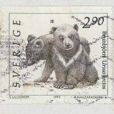 Bären Bar_110