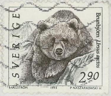 Bären Bar_211
