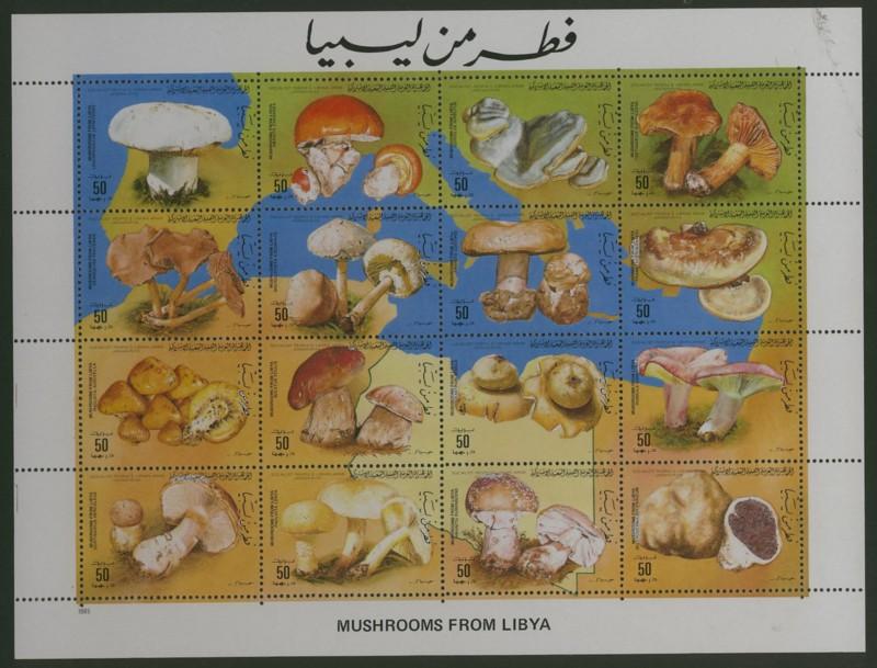 Pilze - Seite 2 Libyen10