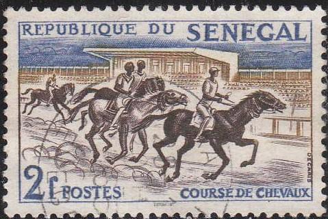 Pferde - Seite 3 Pferd_14