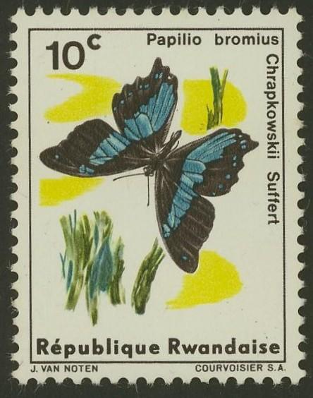 Schmetterlinge Ruanda15