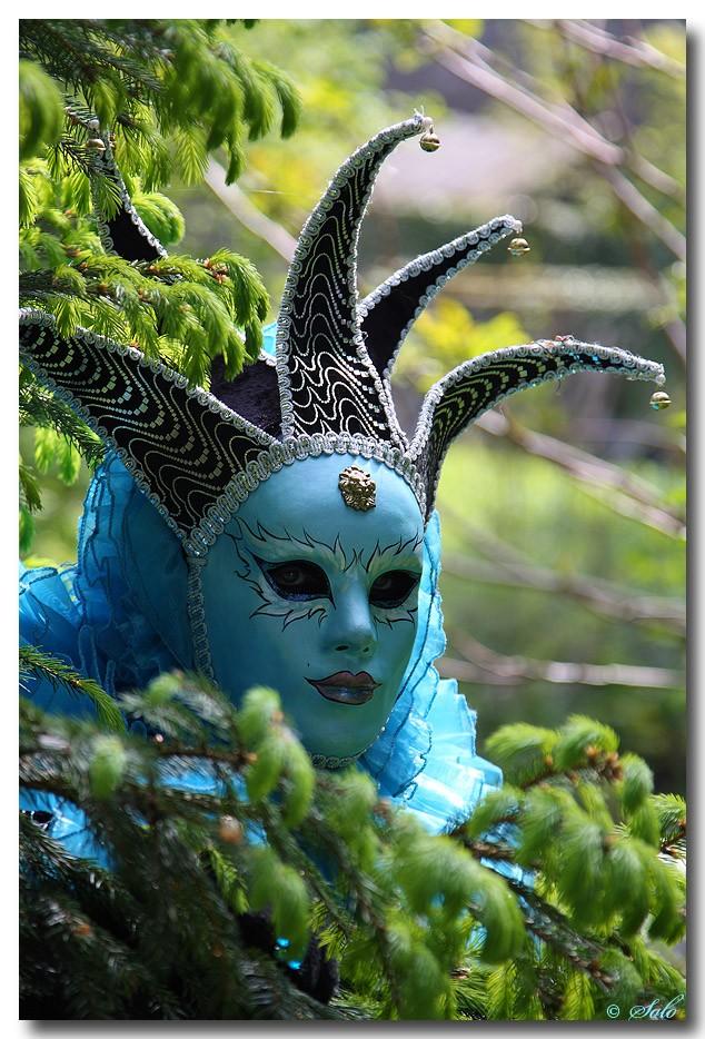 Sortie Carnaval Vénitien : Les photos Carnav12
