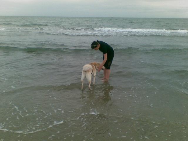 Moi, Bobby... 2 ans... et une nouvelle vie!!!! - Page 3 09062011