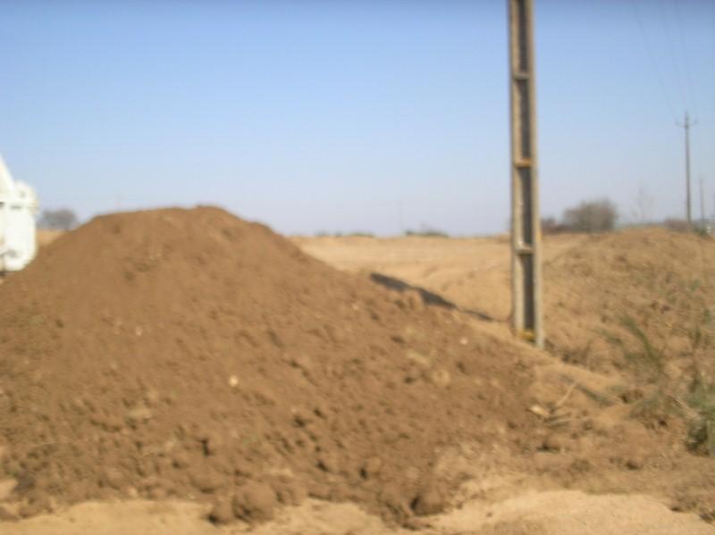 Nouveau terrain décapé P3240011