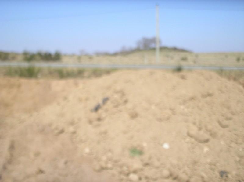 Nouveau terrain décapé P3240012