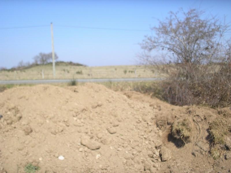 Nouveau terrain décapé P3240013