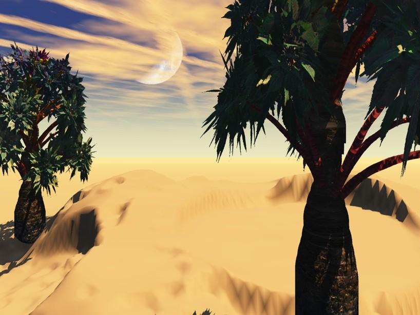 Desert... :) Trees211