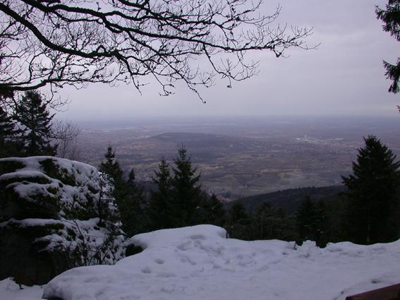 Le Mont Sainte-Odile (67) Pano10
