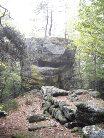 Le Mont Sainte-Odile (67) Wach110