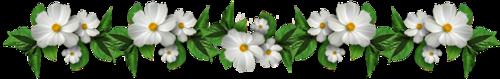 Les bonjours et contacts jounaliers du Mois d' Août 2019 04_08_10