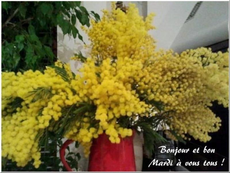 Les bonjours et contacts jounaliers du Mois de Mars 2019 12031910