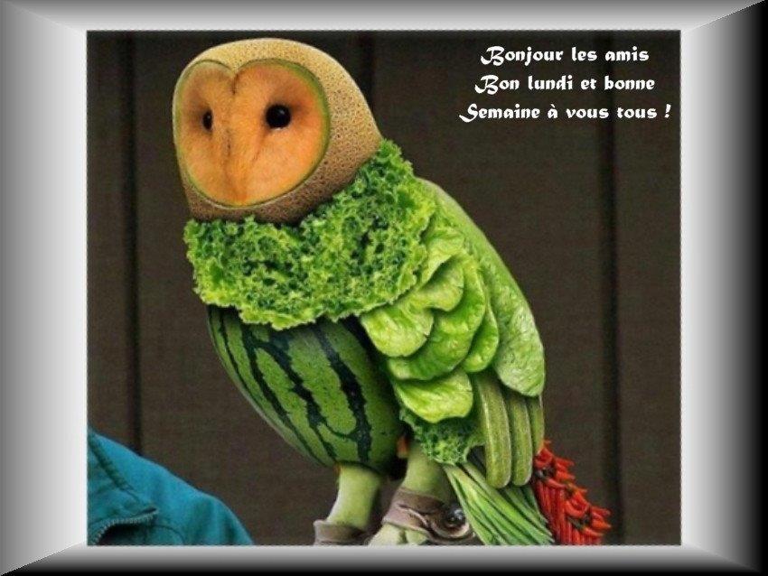 Les bonjours et contacts jounaliers du Mois d' Avril 2019 15041910