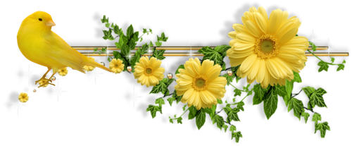 Les bonjours et contacts jounaliers du Mois de Mai 2019 - Page 2 24051910
