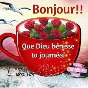 Les bonjours et contacts jounaliers du Mois de Juin 2019 88lep10