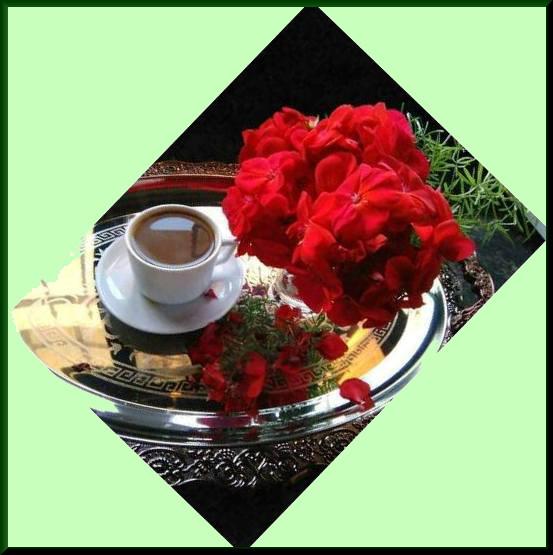 Les bonjours et contacts jounaliers du Mois d' Août 2019 Semai182