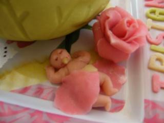 Quand les bébés naissent dans.... Dscf3612