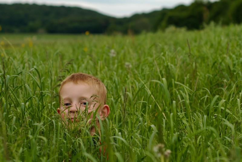 Une drole de mauvaise herbe! 2910