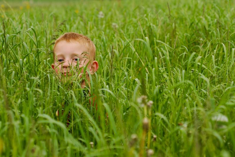 Une drole de mauvaise herbe! Recadr11